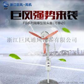 供应浙江巨风FB-500落地式/壁挂式防爆摇头扇