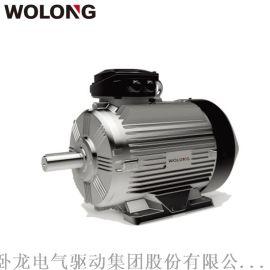 卧龙WE4系列YE4一级能效超超高效电机适用水泵、风机、机床