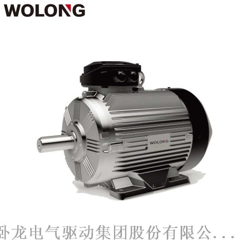 臥龍WE4系列YE4一級能效超  效電機適用水泵、風機、機牀