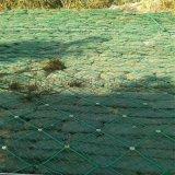 边坡复绿钢绳网.边坡绿化防护网.山体复绿钢丝绳网