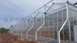 承建玻璃温室大棚工程 玻璃温室大棚厂家直销