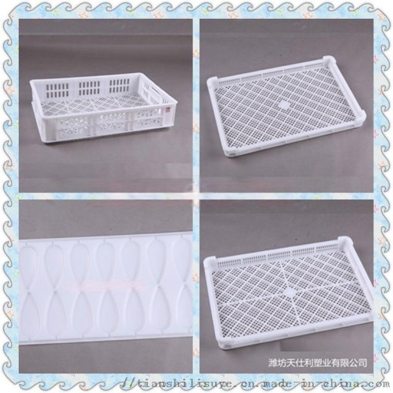 廠家直銷塑料烘乾盤 新疆大棗烘乾盤 乾果烘烤盤