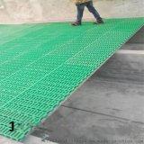 厂家直销养羊设备羊床 养羊设备厂家 塑料羊床设备