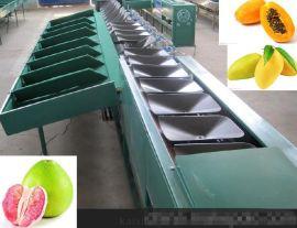 芒果自动选果机,芒果自动分选机,芒果分级机