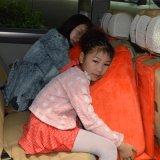 福厚塑胶批发汽车抱枕,价格优惠