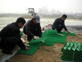 陆河植草格生产陆丰植草格规格