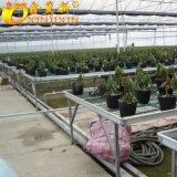 蒸汽翅片管散熱器溫室花卉專用散熱片