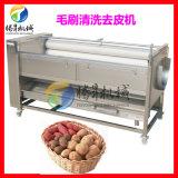 多功能去皮机 TS-M800剥皮机 土豆剥皮机 芋头去皮机