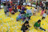 百萬海洋球池嘉年華 2016最新遊樂產品