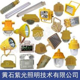 GB8050LED防爆灯, 紫光GB8050防爆灯48W