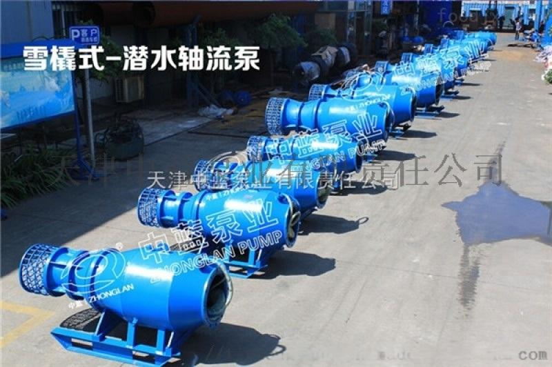 轴流泵600QZB-100  不锈钢定制