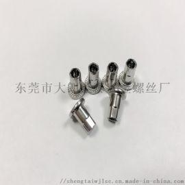 304不锈钢拉铆螺母 实芯防护网螺母