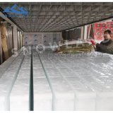 日產20噸50kg條冰機塊冰機大型製冰機製冰設備