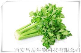 芹菜籽提取物厂家10: 1