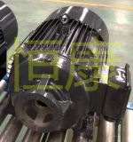 配標準柱塞泵專用電機