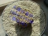 超強吸水,超強結團,優質膨潤土貓砂,廠家直銷