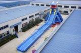 大型充气龙头大滑梯 户外游乐设施移动水上乐园滑梯 充气水滑梯