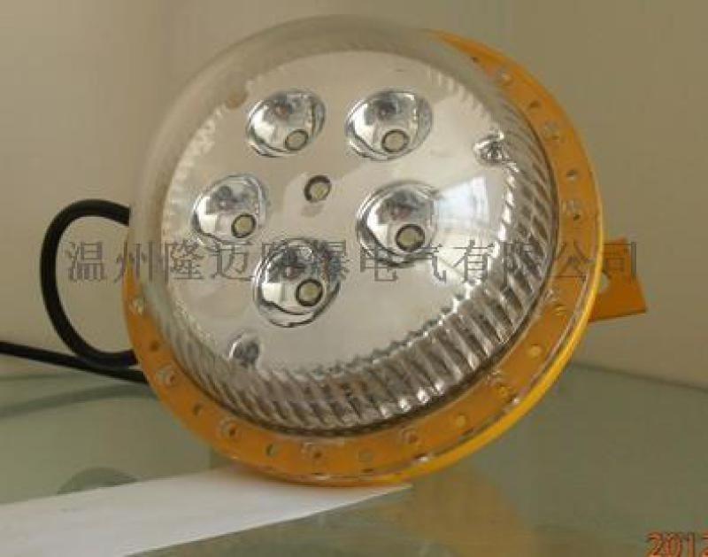 BED02-30B1防爆免維護節能LED燈