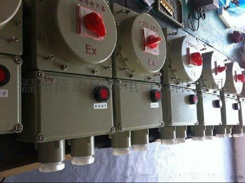 BLK防爆开关箱带漏电保护器