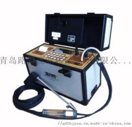 便攜式氣體分析儀美國西斐原裝進口