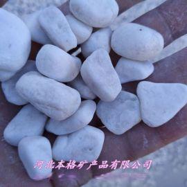 白色鹅卵石 机制鹅卵石 纯白鹅卵石 天然鹅卵石