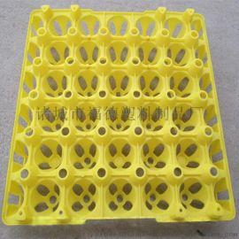 禽类蛋托 种蛋蛋托 塑料鸡蛋盘