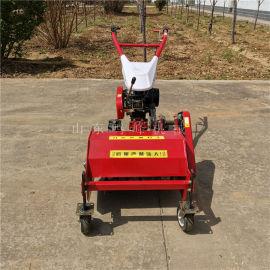 小型果园除草机,果园生态控草碎草机