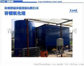 谭福环保 芬顿反应器 芬顿反应 纺织废水