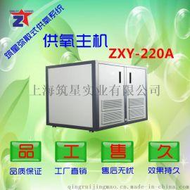 筑星ZXY--220A商用制氧机 商用中心供氧系统
