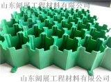 綠色環保5公分加強型植草格/型號齊全