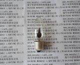 火焰燈泡燭檯燈C35