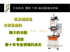 RIYI供应数控伺服油压机,弓形伺服油压冲床