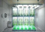 人工氣候室,邁煌科技MH-QHS智慧人工氣候室價格