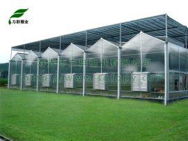 pc阳光板智能连栋温室大棚设计施工