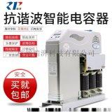 瑞湃抗谐电容器嵌入式RP-XS7/450-25