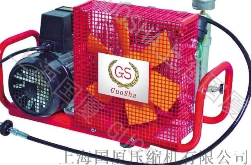 400升流量__空气呼吸器充气泵