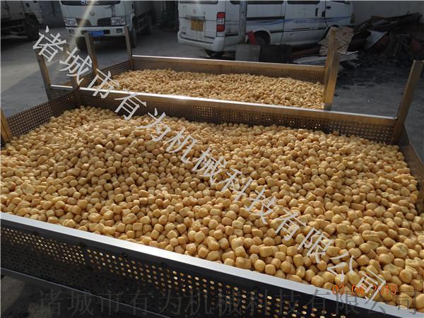 豆制品生产设备,豆泡油炸机,豆腐油炸设备