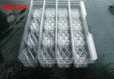 江西赣州食品PVC透明吸塑包装盒水果塑料托盘