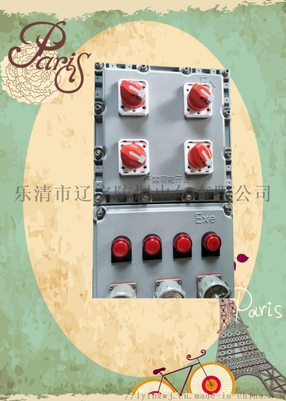 防爆插座检修电源箱 BXMD 厂家直供带插座带自锁