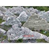 泰山石雪浪石切片组合景观石头室内装饰景观石