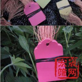 供应工业集采园艺花卉专用塑料标签 花卉标签 植物标签 园艺标签