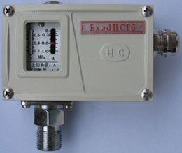 防爆壓力繼電器(HYP-EX)