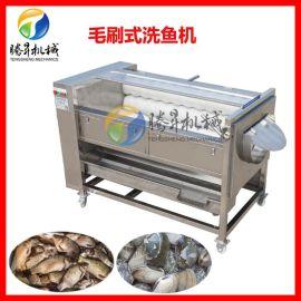 厂家现机 土豆去皮机 滚筒花生清洗机