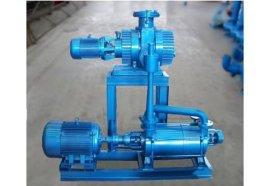 闭式水环真空泵2BV6131 无油真空泵