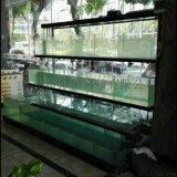东莞虎门海鲜池定做水产海鲜鱼缸专业设计酒店