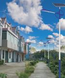 江蘇廠家直銷10米太陽能路燈用於城市住宅小區等地