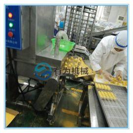 雪花鸡柳条上雪花片机 全自动上粉裹糠机专业厂家