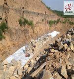 CMA認證 廠家批發自然生態型河流建設材料 高爾凡材質 生態網格 格賓網箱