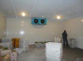 水果保鲜设备厂家哪里有?水果冷库设计建造