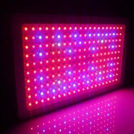 600w大功率植物生长灯 全光谱温室补光灯 商业种植灯